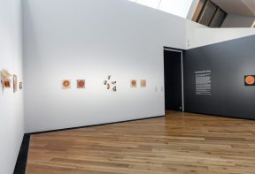 An exhibition space within a gallery, with sculptures of food encased in resin mounted on the walls.