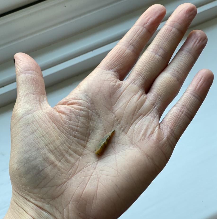 An open palm holding a small arrowhead