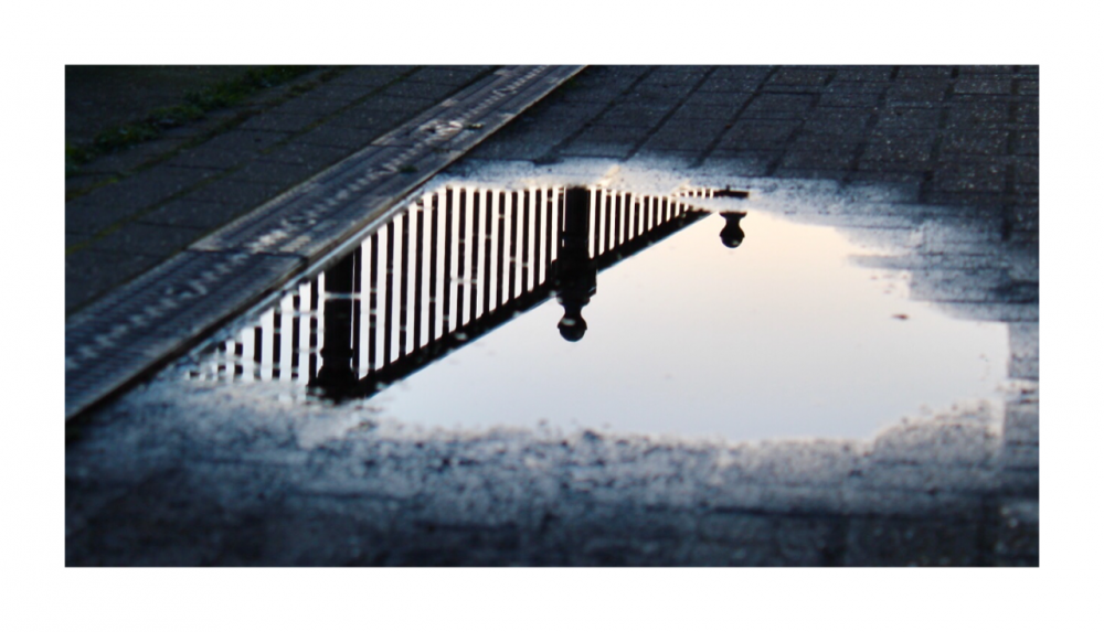 Reflection of railings in a puddle