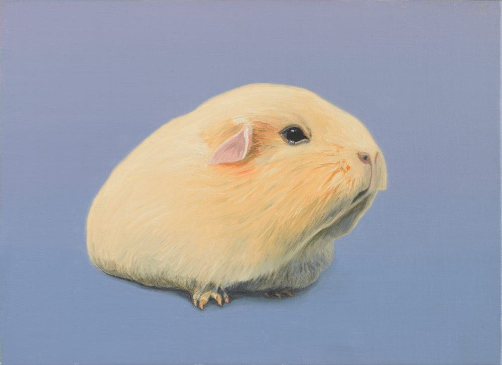 An oil painting of a cream coloured guinea pig against a lilac background